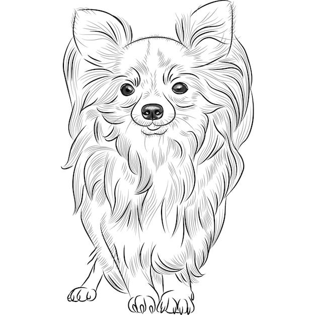 Szkic W Skali Szarości Uroczego Psa Rasy Chihuahua Uśmiechnięty Premium Wektorów