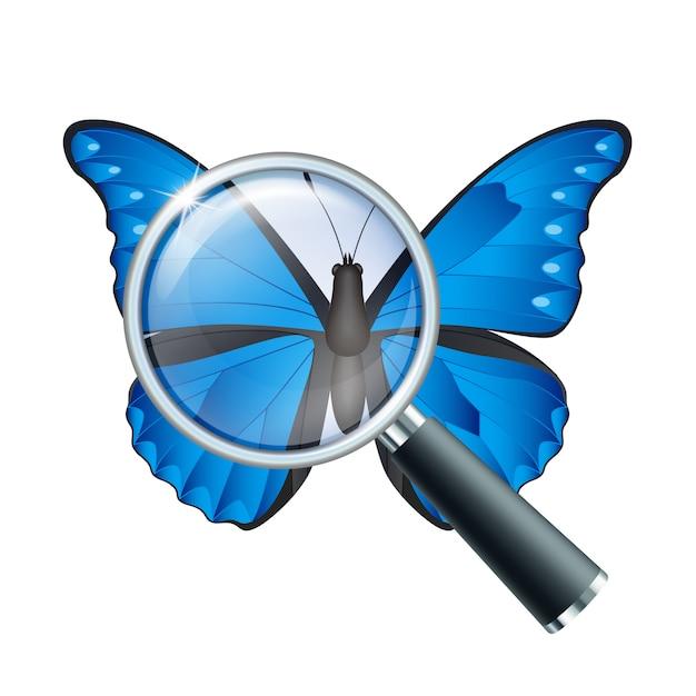 Szkło powiększające i motyl Premium Wektorów