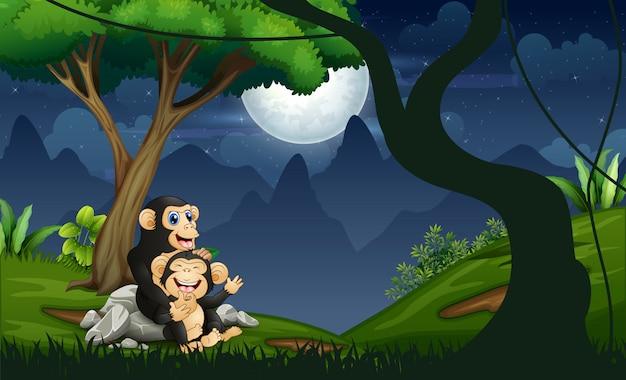 Szympans Matka Z Dzieckiem W Nocy W Lesie Premium Wektorów