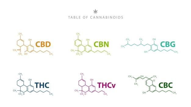 Tabela Kannabinoidów. Wyizolowane Wzory Chemiczne Naturalnych Kannabinoidów Premium Wektorów