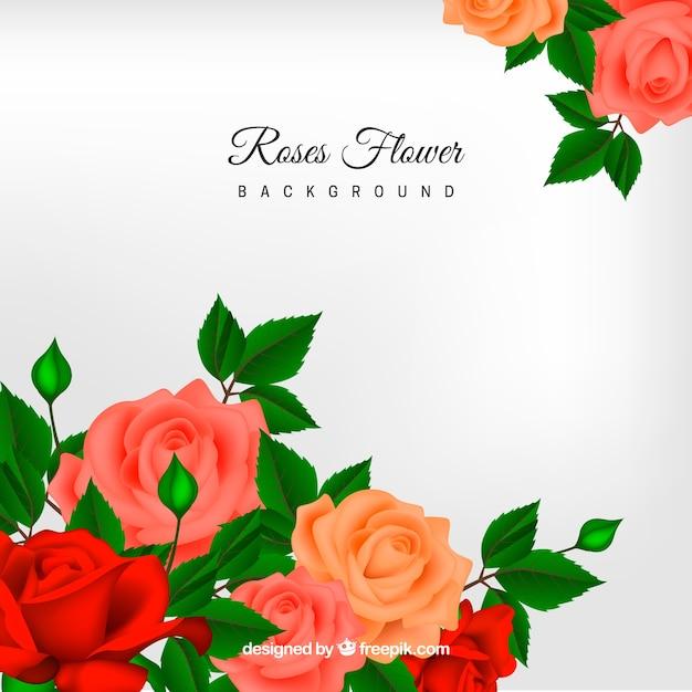 Tle kwiatów w realistycznym stylu Darmowych Wektorów
