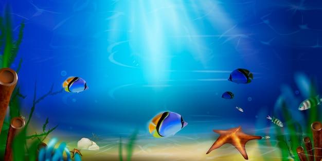 Tło Lato. Podwodny światowy Natury Sceny Tło. Ocean, życie Na Dnie Morza Z Błękitną Wodą, Trawa Morska, Ryby Egzotyczne, Bąbelki, Wodorosty, Promienie Słońca. Premium Wektorów