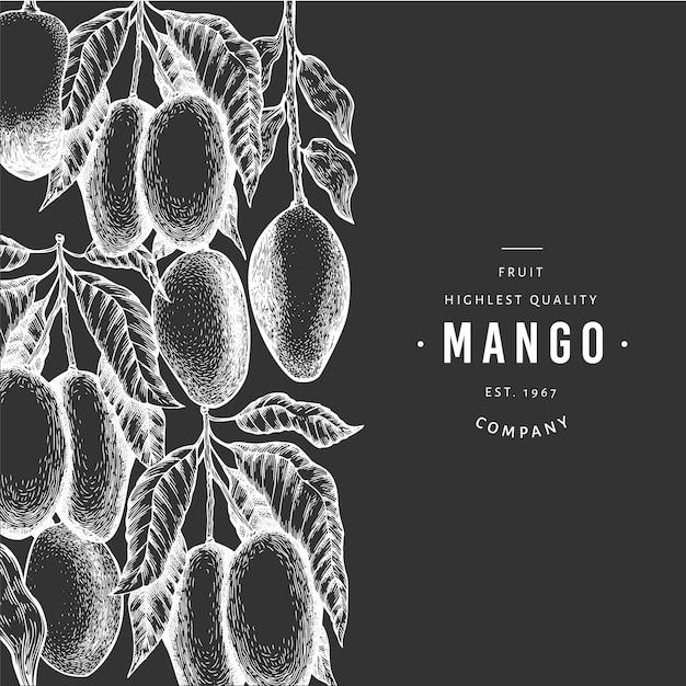 Tło Mango Ręcznie Rysowane Ilustracji Wektorowych Egzotycznych Owoców Na Pokładzie Kredy. Owoc Zwrotnika W Stylu Grawerowanym. Szablon Projektu Vintage żywności. Premium Wektorów