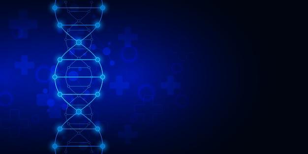 Tło Nici Dna I Inżynieria Genetyczna Lub Badania Laboratoryjne Premium Wektorów