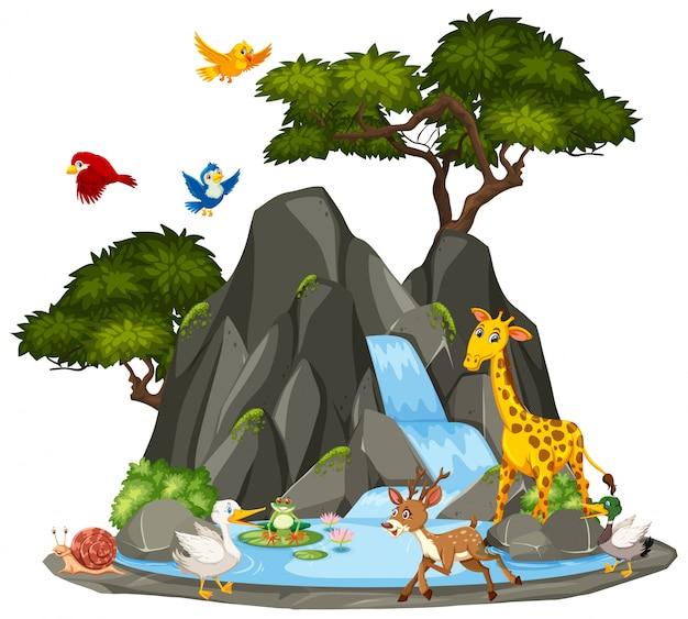 Tło Sceny Dzikich Zwierząt I Wodospad Premium Wektorów