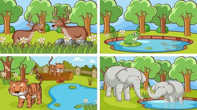 Tło Sceny Dzikich Zwierząt Darmowych Wektorów