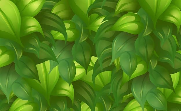 Tło Szablon Z Zielonymi Liśćmi Darmowych Wektorów