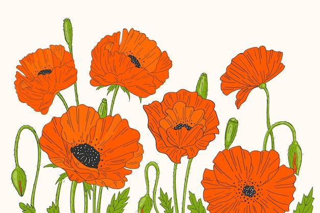 Tło Z Czerwonymi Kwiatami Darmowych Wektorów