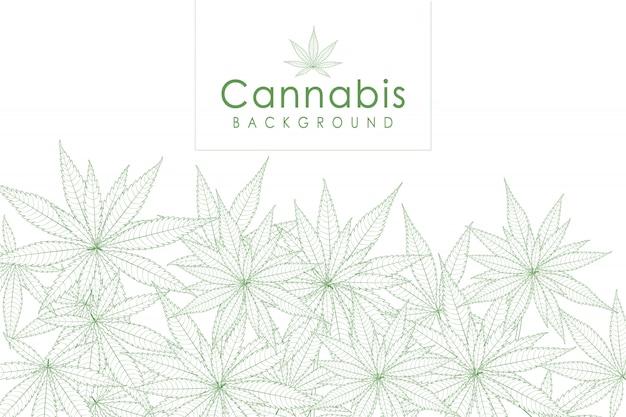 Tło zielony liść marihuany narkotyków marihuana zioło tło. Premium Wektorów
