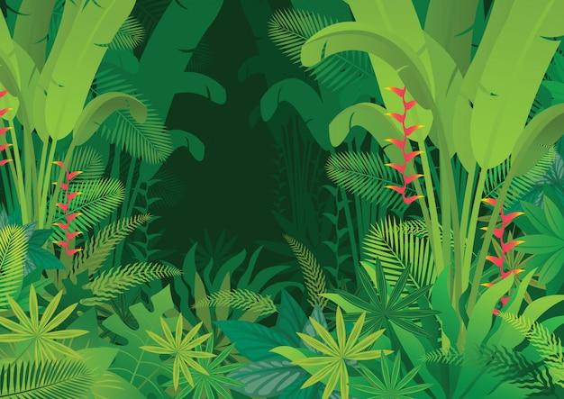 Tropikalna Dżungla Ciemne Tło, Las, Las Deszczowy, Rośliny I Przyroda Premium Wektorów