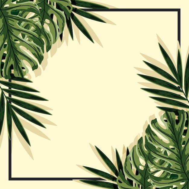Tropikalne Liście Tło Z Ramą Darmowych Wektorów