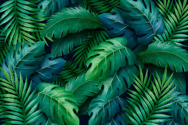 Tropikalne Liście Zielone Tło Darmowych Wektorów