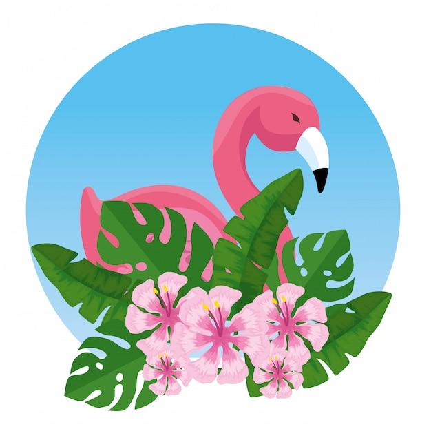 Tropikalny flamandzki z egzotycznymi kwiatami i liśćmi Darmowych Wektorów