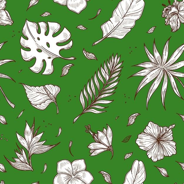 Tropikalny Liść Palmowy Bezszwowe Wektor Wzór Lato Szkic Tło Premium Wektorów