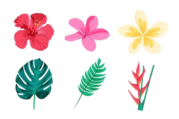 Tropikalny Pakiet Kwiatów I Liści Darmowych Wektorów