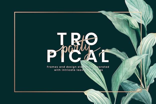 Tropikalny Tło Darmowych Wektorów