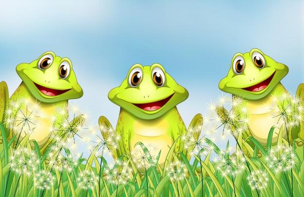 Trzy żaby w ogrodzie Darmowych Wektorów
