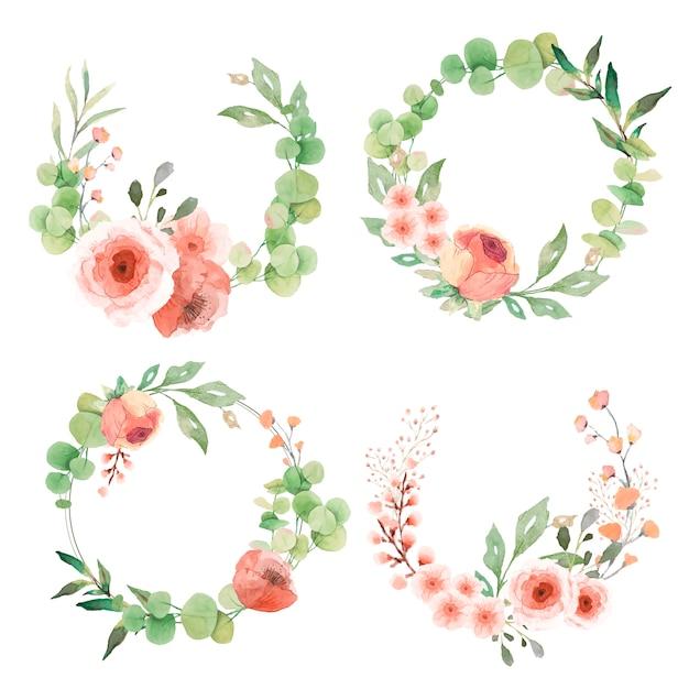 Urocza Kolekcja Wianek Z Liśćmi Eukaliptusa I Kwiatami Darmowych Wektorów