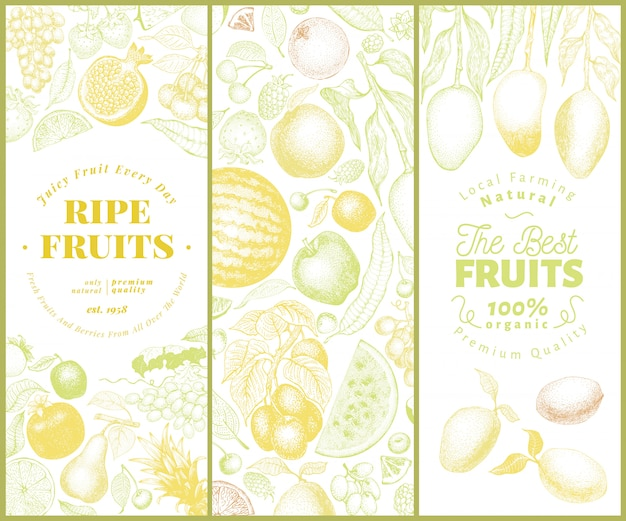 Ustaw baner owoce i jagody Premium Wektorów