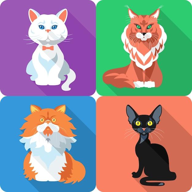Ustaw Ikonę Płaska Konstrukcja Kot Brytyjski I Perski Kot Bombaj I Maine Coon Premium Wektorów