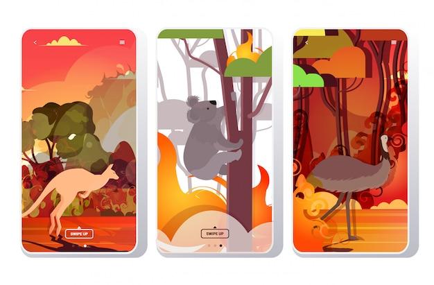 Ustaw Strusia Kangura Koala Uciekająca Przed Pożarami Lasów W Australii Zwierzęta Giną W Pożarze Pożary Buszu Koncepcja Klęski żywiołowej Intensywne Pomarańczowe Płomienie Ekrany Telefonów Kolekcja Aplikacji Mobilnej Premium Wektorów
