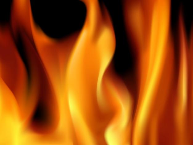 Vectoral burning flames Premium Wektorów