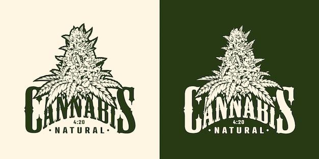 Vintage Etykieta Rośliny Marihuany Darmowych Wektorów