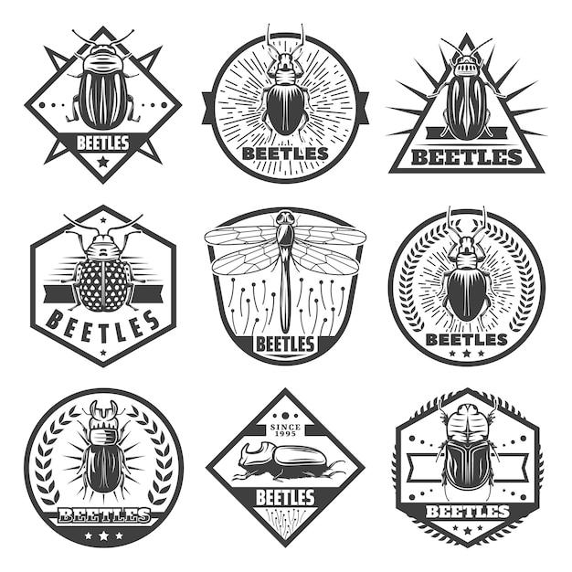 Vintage Monochromatyczne Chrząszcze Premium Zestaw Etykiet Z Napisami Ważka I Różne Typy Błędów Na Białym Tle Darmowych Wektorów