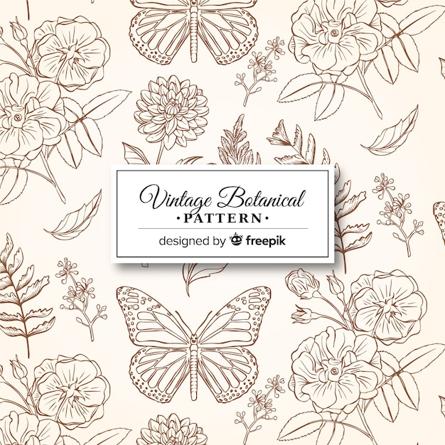 Vintage wzór botaniczny Darmowych Wektorów