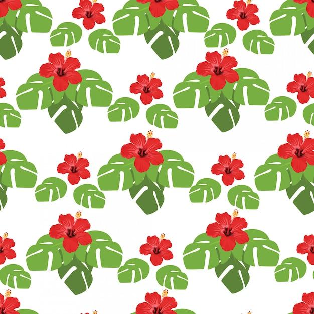 W wakacje letnie, jednolite wzór z liści monstera i kwiatów hibiskusa Premium Wektorów