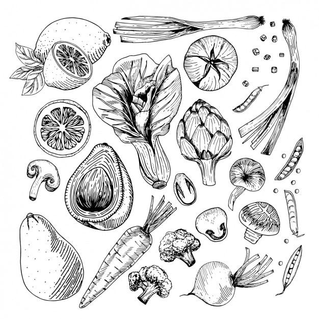 Warzywa projektuje kolekcję Darmowych Wektorów