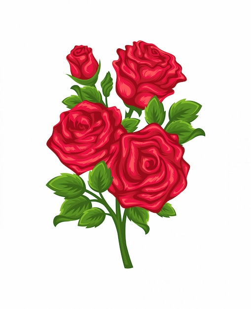 Wektor gałąź czerwone róże odizolowywać na białym tle. Premium Wektorów