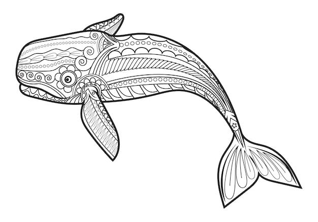 Wektor Wieloryb Dla Dorosłych Kolorowanki Antystresowe Wektor