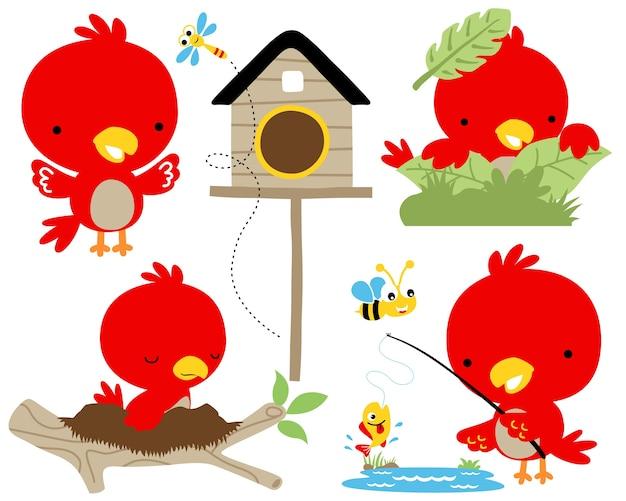 Wektor Zestaw Ilustracja Kreskówka Czerwony Ptak Premium Wektorów