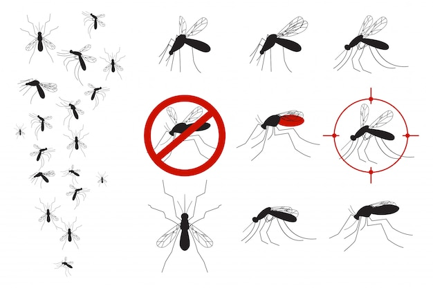 Wektor zestaw komary i komary Premium Wektorów