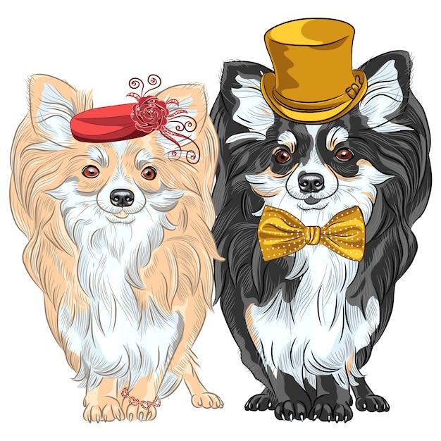 Wektor Zestaw Moda Psy Chihuahua, Pani W Czerwonym Kapeluszu Z Bransoletką I Gentelman W Złotym Jedwabnym Kapeluszu I Muszce Premium Wektorów