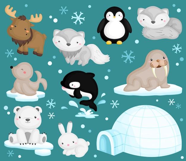 Wektor zestaw zwierząt arktycznych Premium Wektorów