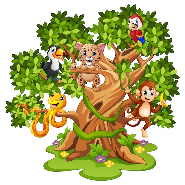 Wektorowa ilustracja dzikie zwierzę kreskówka na drzewach Premium Wektorów