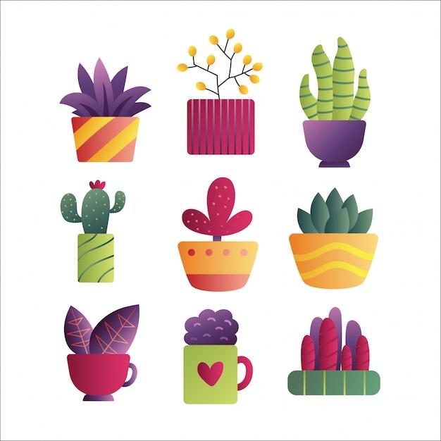 Wektorowa Ręka Rysujący Odosobniony Kaktus I Sukulenty Ustawiający. Premium Wektorów