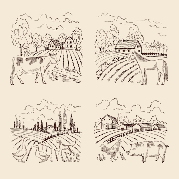 Wektorowa wioska i duży pole. krajobraz z hodowlą i zwierzętami. zestaw do ilustracji w stylu retro Premium Wektorów