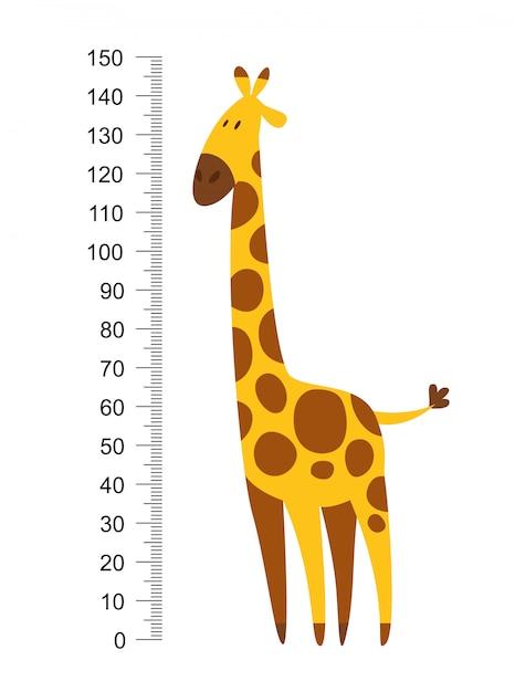 Wesoła Zabawna żyrafa Z Długą Szyją. Miernik Wysokości Lub Metr Naklejki ścienne Lub ścienne Od 0 Do 150 Centymetrów Do Pomiaru Wzrostu. Ilustracja Wektorowa Dla Dzieci Premium Wektorów