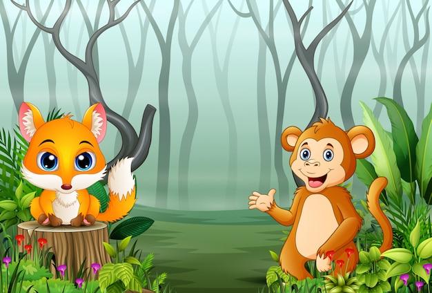 Widok las rośliny w mgle z lisem i małpą Premium Wektorów