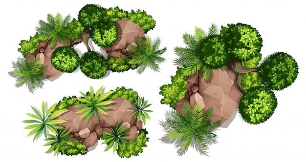Widok z lotu ptaka na rośliny i skały Darmowych Wektorów