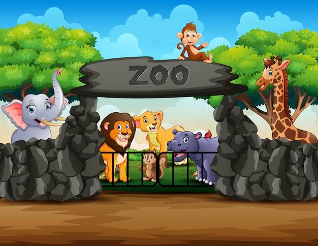 Widok z zewnątrz wejście do zoo z różnych zwierząt kreskówek Premium Wektorów