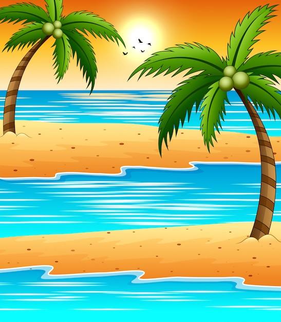 Wieczorna Plaża O Zachodzie Słońca Z Ptakami Lata Na Niebie Premium Wektorów