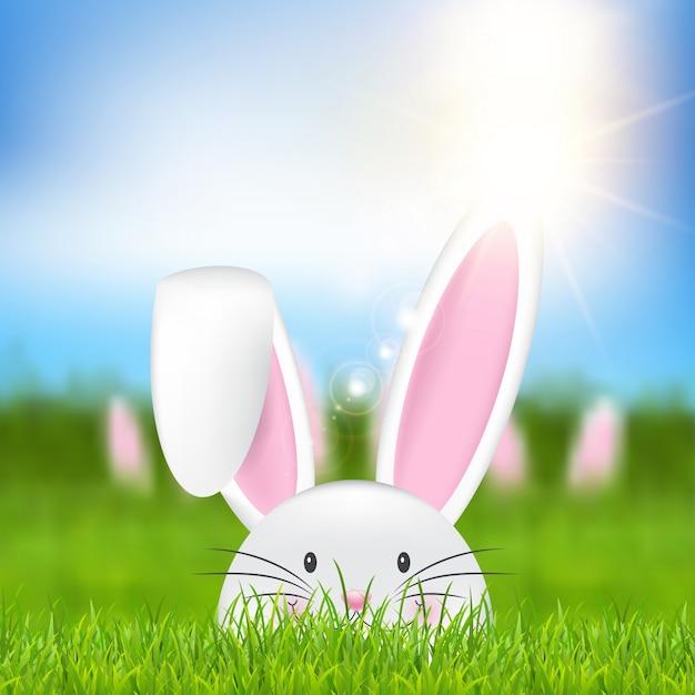 Wielkanocny królik w trawie Darmowych Wektorów