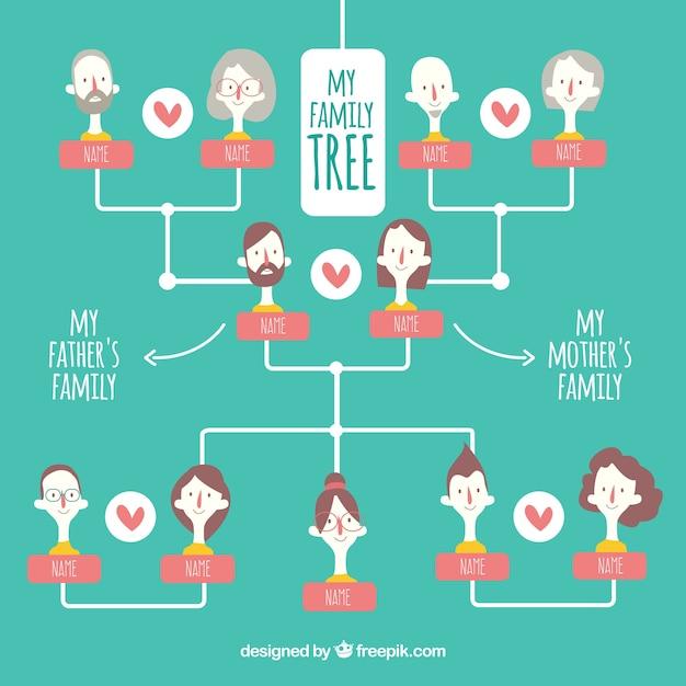 Wielki Drzewo Genealogiczne Ze Szczegółami Kolorów Darmowych Wektorów
