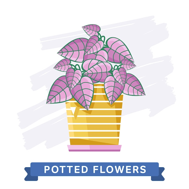 Wiosenne Kolorowe Kwiaty W Doniczkach Premium Wektorów