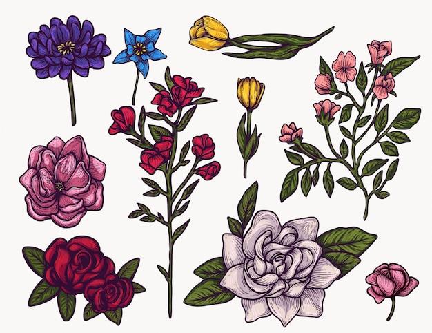 Wiosenne Kwiaty Ręcznie Rysowane Na Białym Tle Kolorowe Clipart. Zasadzaj Kwitnące Elementy Kwiatów Do Projektowania Graficznego I Swoich Kreatywnych Projektów Premium Wektorów