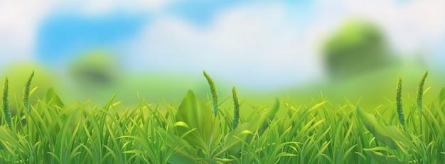 Wiosenny Krajobraz. Ilustracja Zielona Trawa Premium Wektorów